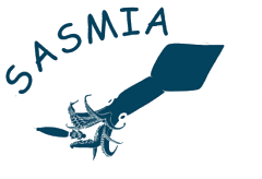 sasmia_colour